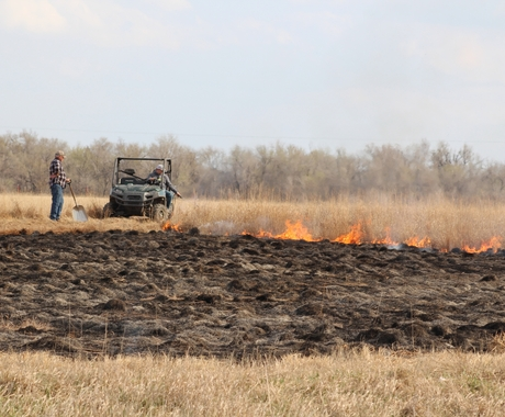 Prescribed burn on grasslands in Kansas