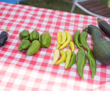 Vegetables on a farmers market table
