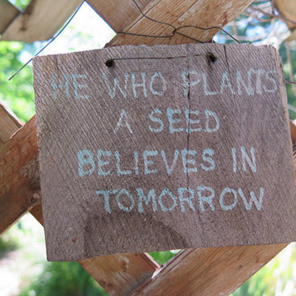 Sign saying he who plants a seed believes in tomorrow
