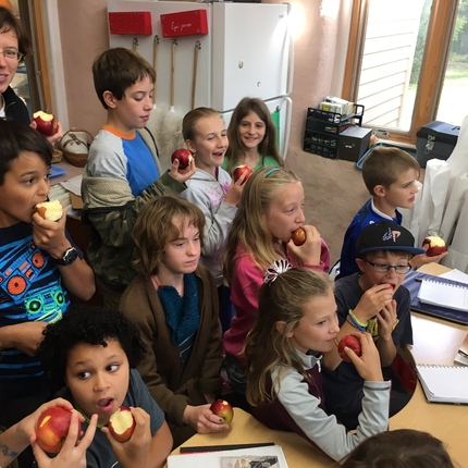 Class of students crunching into apples
